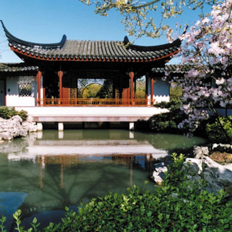 experience vancouver group Dr. Sun Yat-Sen Classical Chinese Garden spring 2017
