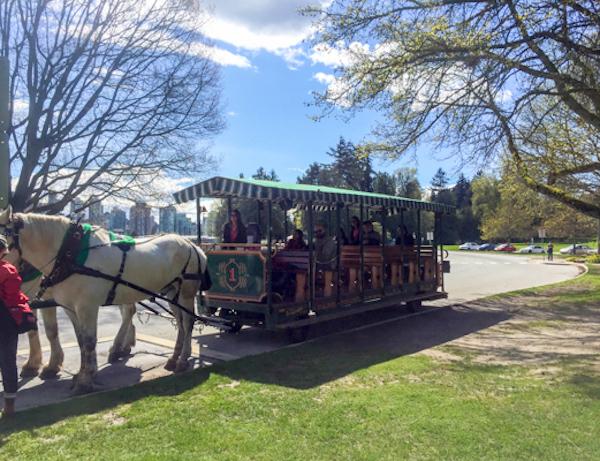 Stanley Park Horse-drawn Carriage Tour